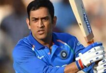 MS Dhoni will become coach